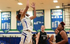Playoff hopes alive for women's basketball team